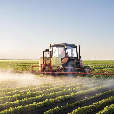 Agrotóxicos: Salud y Nutrición